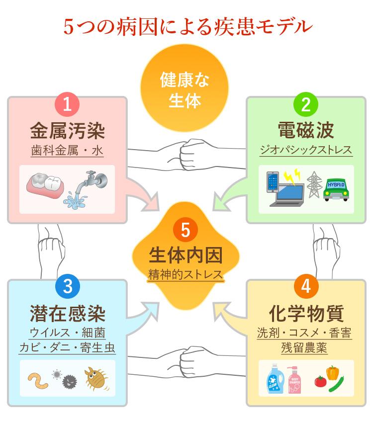 5つの病因